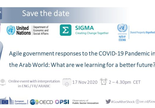 Agile government responses to the COVID-19 pandemic in the Arab region: what are we learning for a better future
